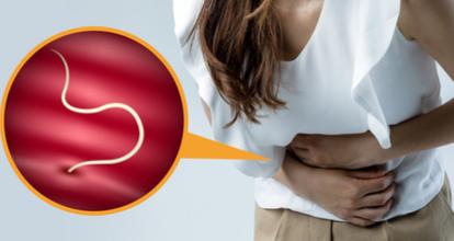 回虫駆除に清肌安蛔湯とは?効果や配合されている生薬を確認